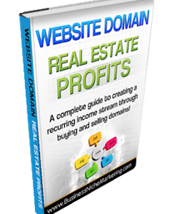Website Domains Buying and Selling Resource Guide